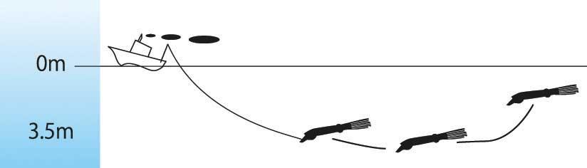 Sashimi-3D-Squirt-Nage.jpg